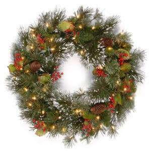 24 in. Wintry Pine Artificial Wreath with Clear Lights