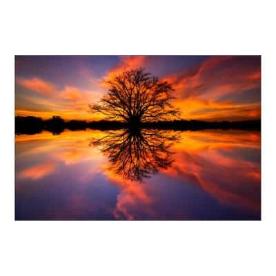 """47 in. x 32 in. """"Balance"""" Tempered Glass Wall Art"""
