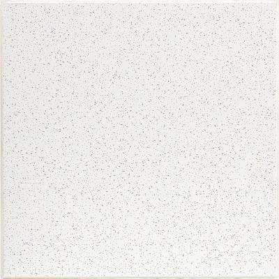 2 ft. x 2 ft. Radar White Fineline Beveled Edge Lay-In Ceiling Tile, carton of 16 (64 sq. ft.)