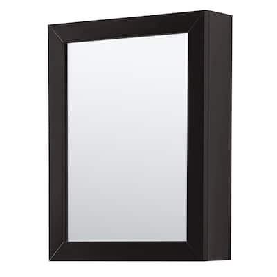 Daria 24 in. W x 30 in. H Framed Rectangular Bathroom Vanity Mirror in Dark Espresso