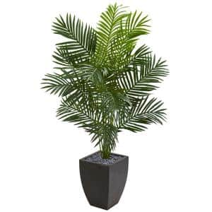 Indoor 5.5 ft. Paradise Artificial Palm Tree in Black Planter