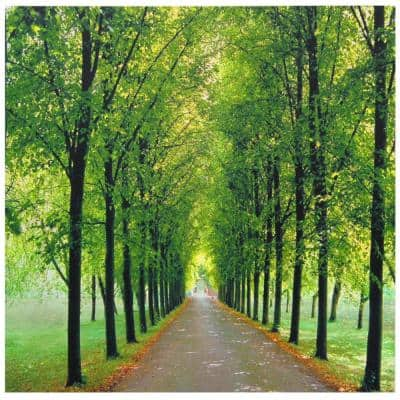 """19.75 in. x 19.75 in. """"Path of Life"""" Canvas Wall Art"""