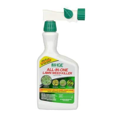 Herbicides All-In-One Lawn Weed Killer Ready-To-Spray