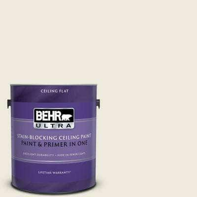 1 gal. #PPU10-14 Ivory Palace Ceiling Flat Interior Paint and Primer in One
