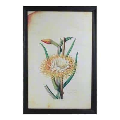 26 in. Yellow And Green Desert Baileya Flower with Black Photo Frame