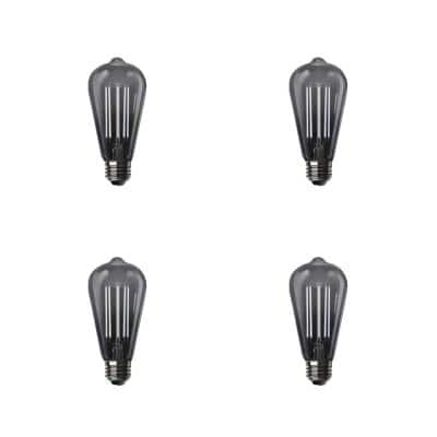 100-Watt Equivalent ST19 Dimmable LED Smoke Glass Vintage Edison Light Bulb With Straight Filament Daylight (4-Pack)
