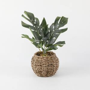 11.75 in. H Artificial Split Leaf in 6 in. Basket