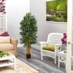5 ft. Phoenix Palm Artificial tree with Natural Trunk