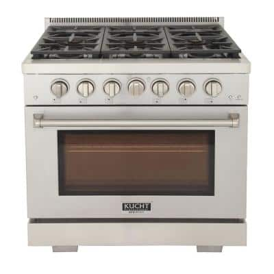 Professional 36 in. 5.2 cu. ft. Propane Gas Range with Two 21K Power Burners and Convection Oven in Stainless Steel