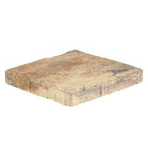 Taverna 16 in. L x 16 in. W x 50 mm H Square Amelia Blend Concrete Step Stone ( 72-Piece/124 Sq. ft./Pallet )
