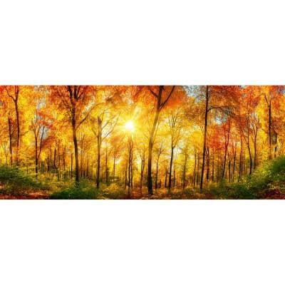 Scenic Sunny Forest Cityscapes Wall Mural