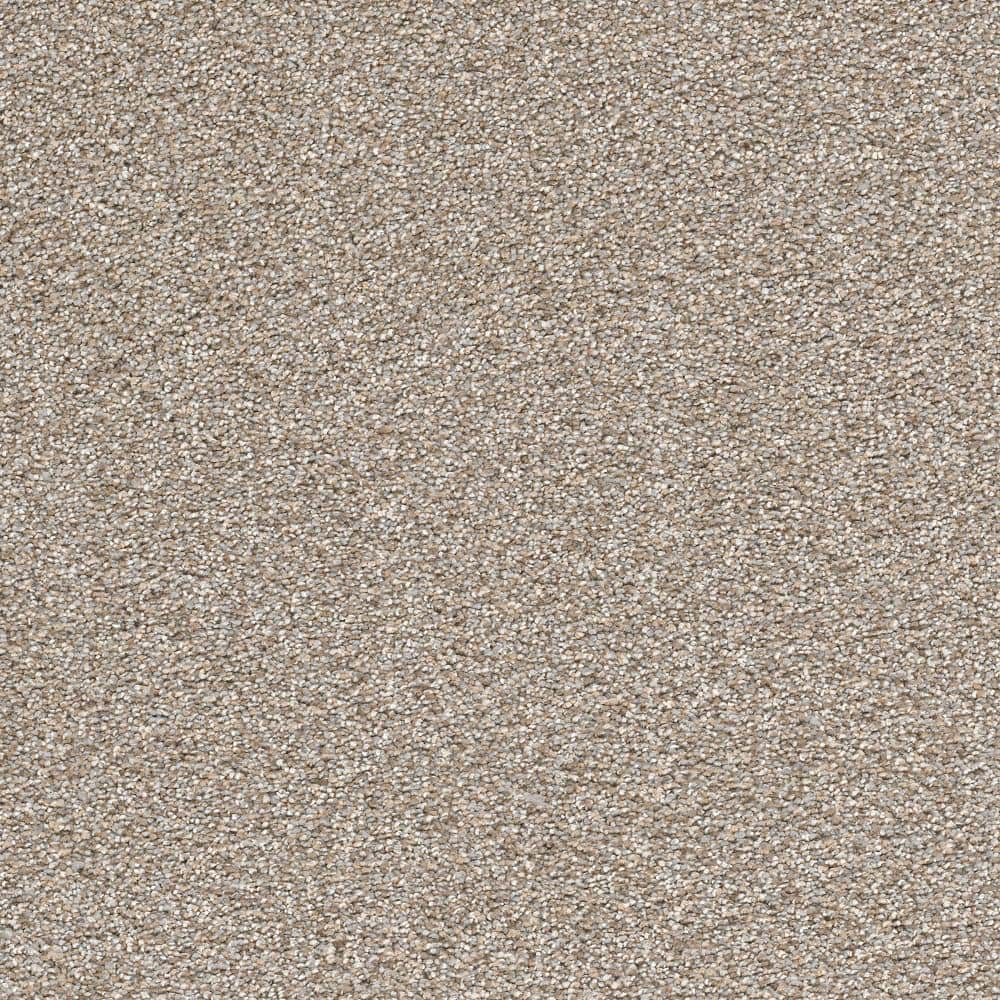 Home Decorators Collection Perfected II - Color Masterly Texture 12 ft. Carpet