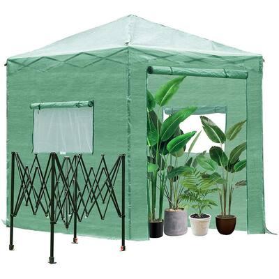 8 ft. W x 8 ft. D x 8 ft. H Greenhouse