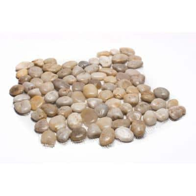 12 in. x 12 in. White Mid-Polish Pebble Stone Floor and Wall Tile (5.0 sq. ft. / case)