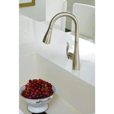 Arbor Single-Handle Pull-Down Sprayer Bar Faucet with Reflex and Power Clean in Chrome