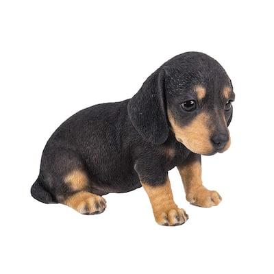 Dachshund Puppy Statue