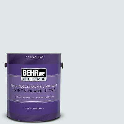 1 gal. #PPU13-17 Fresh Day Ceiling Flat Interior Paint and Primer in One
