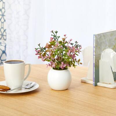9in. Eucalyptus and Sedum Succulent Artificial Plant in White Planter