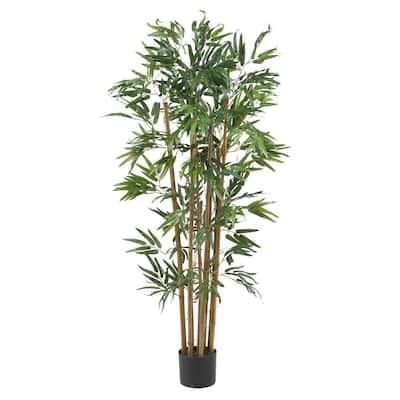 4 ft. Multi Bambusa Bamboo Silk Tree