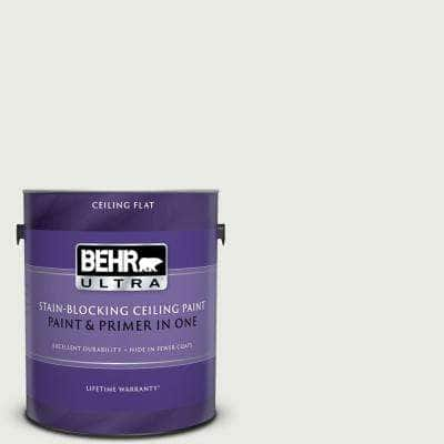 1 gal. #PPU12-12 Gallery White Ceiling Flat Interior Paint and Primer in One