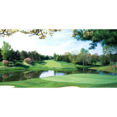 54 in. x 27 in. Congressional Golf Wall Mural