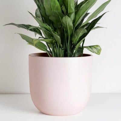 7 in. to 12 in. Soft Pink Ceramic Egg Shaped Indoor Planter