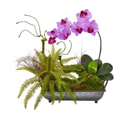 Phalaenopsis Orchid and Fern Artificial Arrangement in Metal Tray