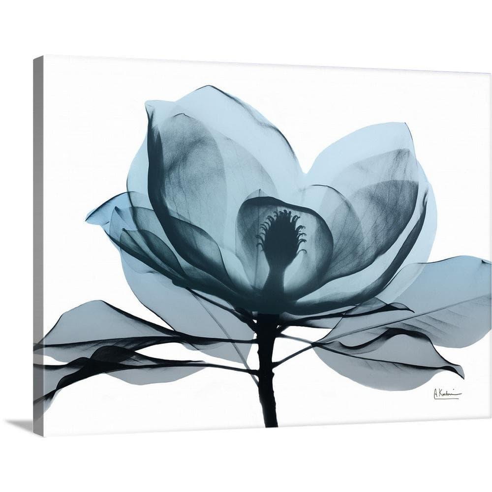 Greatbigcanvas Midnight Magnolia Ii By Albert Koetsier Canvas Wall Art 2446173 24 40x30 The Home Depot