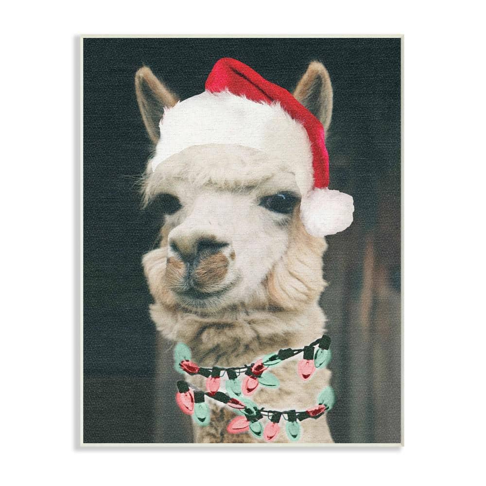 Stupell Industries 10 In X 15 In Christmas Llama By Daphne Polselli Printed Wood Wall Art Hwp 136 Wd 10x15 The Home Depot