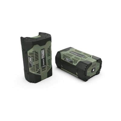 62V 4.0 Ah High Capacity fade-free lithium power Battery with LED fuel gage with USB Port