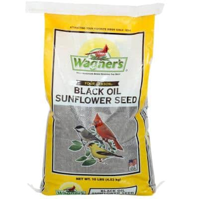 Four Season 10 lb. Black Oil Sunflower Seed