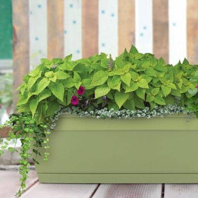 Newbury 7.88 in. x 23.75 in. Lotus Green Resin Window Box with Saucers (12-Case)