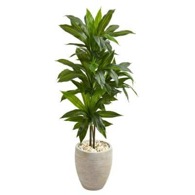 Real Touch 4 ft. Indoor Dracaena Artificial Plant in Sand Planter