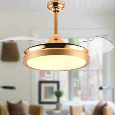 36 in. LED French Gold Retractable Ceiling Fan with Light Kit and Remote Control
