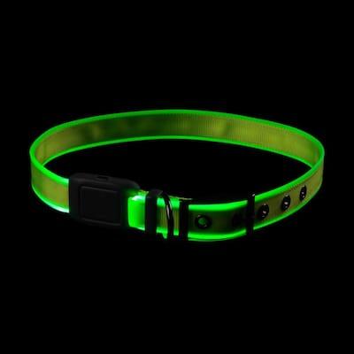 NiteDog - XL - Lime/Green Rechargeable LED Collar