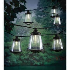 Outdoor/Indoor 11 ft. Plug-In LED ST38 Vintage Bulb String Light with Seedy Cage (10-Heads)