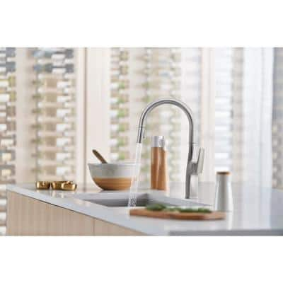 Rivana Single-Handle Pull-Down Sprayer Kitchen Faucet in Stainless