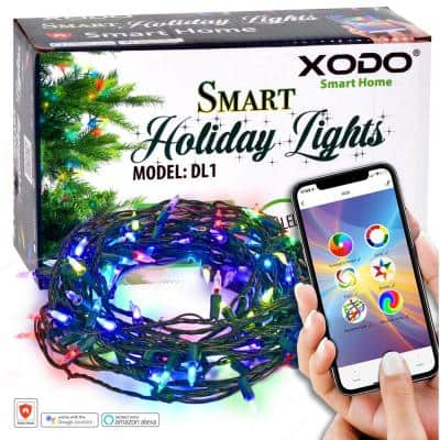 Smart Christmas Lights Outdoor/Indoor 35 ft. Plug-In Globe Bulb LED String Light Compatible with Alexa/Google Assistant