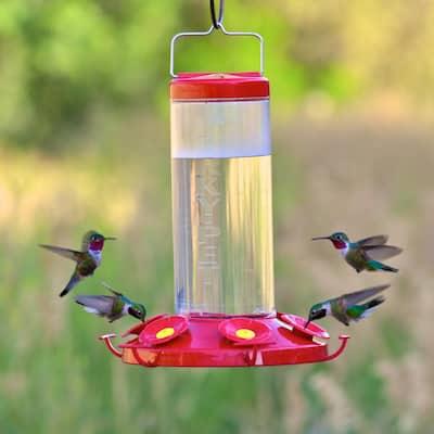 Grand Master Plastic Hummingbird Feeder - 48 oz. Capacity