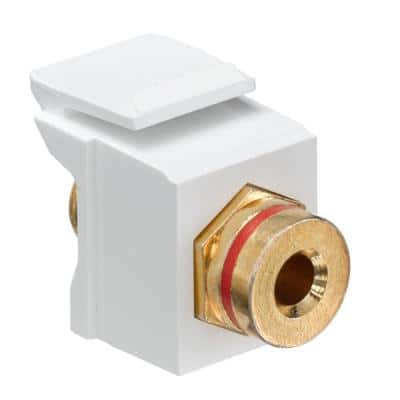 QuickPort Banana Jack Gold-Plated Connector with Red Stripe, Light Almond