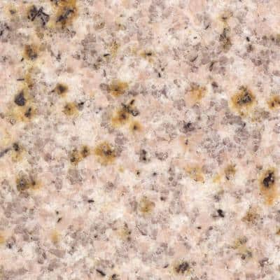 4 in. Beige Granite Sample Chip