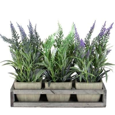 10.25 in. Lavender Decorative in Petite Vase with Distressed Wood Tray