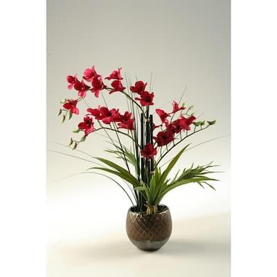 Indoor Red Orchids in Round Ceramic Planter