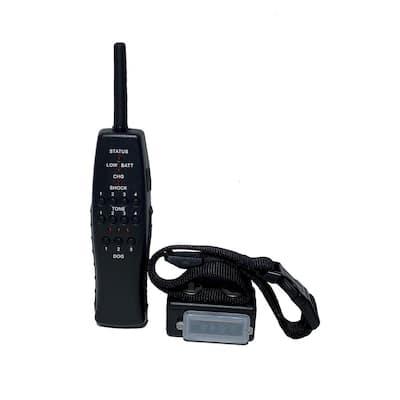 Express Train Remote Radio Dog Trainer