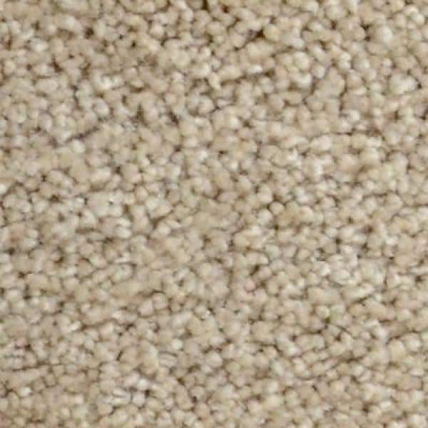 Home Decorators Collection Carpet Sample Stargazer Color Twilight Texture 8 In X 8 In Ef 226217 The Home Depot