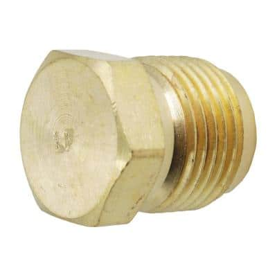 1/2 in. Flare Brass Plug Fitting