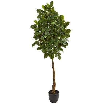 Indoor 5 in. Beech Leaf Artificial Tree