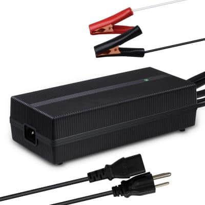 20 Amp AC-to-DC LFP Portable Battery Charger