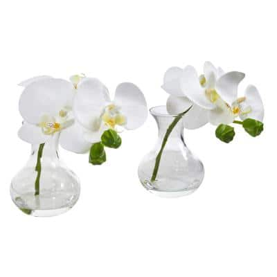 Phalaenopsis Orchid Artificial Arrangement in Vase (Set of 2)