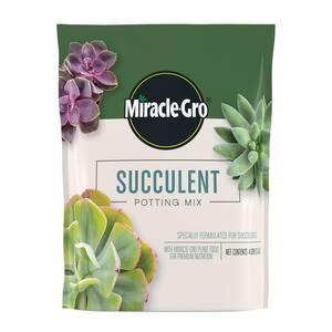 4 Qt. Succulent Potting Mix